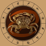 Free Psychic,  Tarot & Astrology Readings