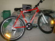 mens 22 speed mountain bike,