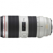 Canon EF 200mm f/2.8L II USM  450 USD